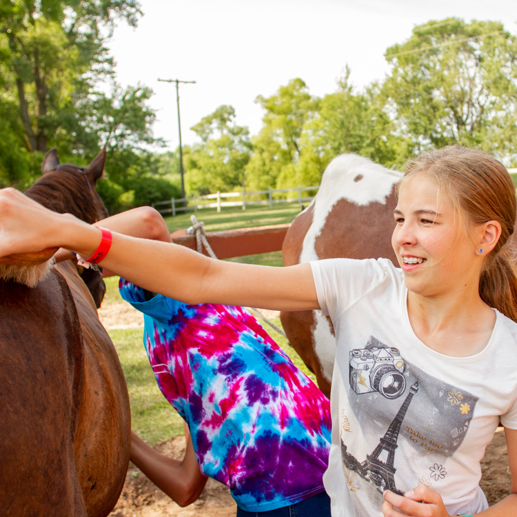 beginner and advanced horsemanship