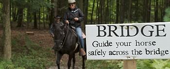 Cowboy Challenge Course